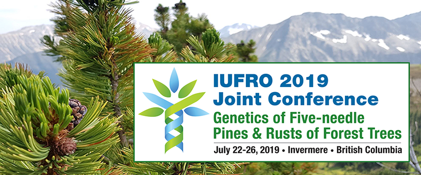 IUFRO 2019 Joint Conference: Genetics of Five-needle Pines